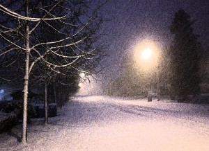 1-first-snowfall-barbara-white